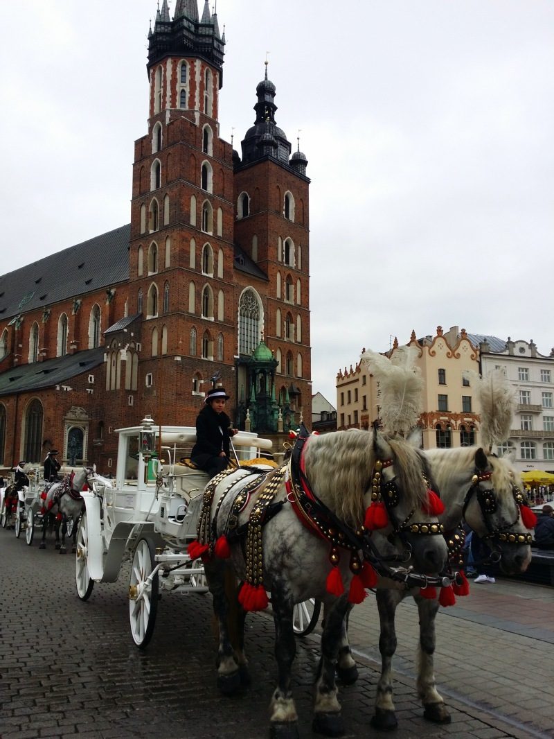 krakow-what-to-do-horse-and-carriage