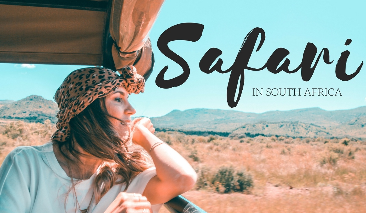 VIDEO: SAFARI IN SOUTH AFRICA