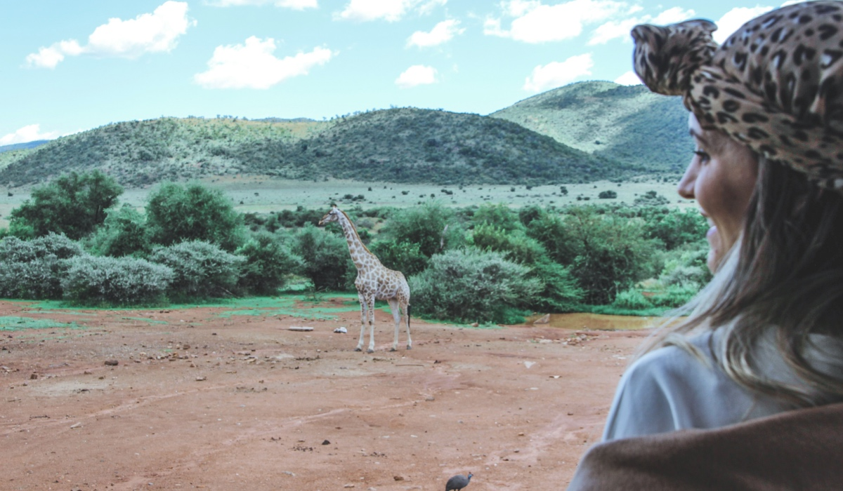 MY SAFARI ADVENTURES: THE PILANESBERG PARK